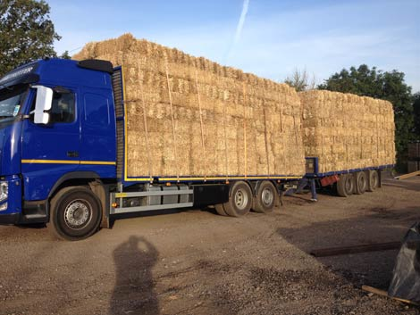 Straw_Bale_Timber_Frame_03